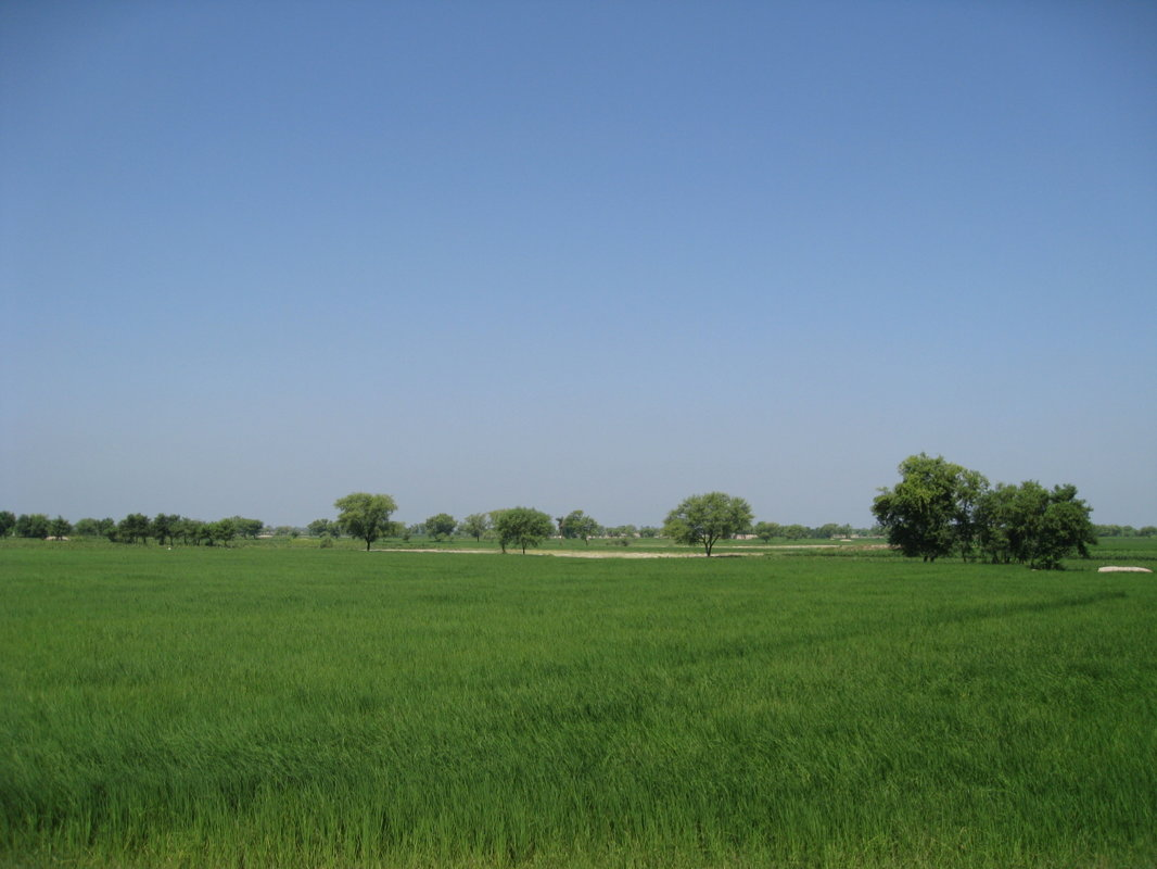 For sale more than 9 000 ha of arable land located in Latvia, Europe!