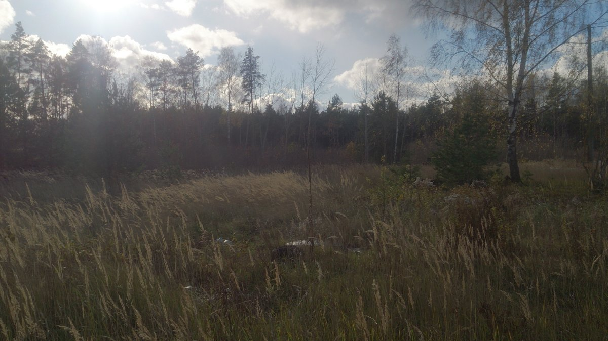For sale development land in Marupe, Latvia!