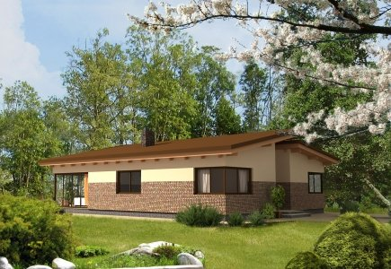 Single-storey house project Mindaugas